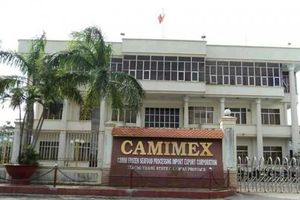 Thủy sản Camimex nhọc nhằn về đích?