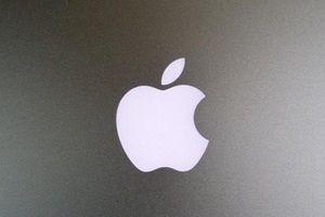Cạnh tranh với Samsung, Apple phát triển thẻ theo dõi đồ vật