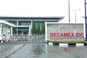 Lợi nhuận 'bốc hơi' hơn 100 tỷ sau kiểm toán, ông lớn Becamex IDC nói gì?