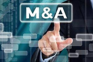 Động cơ và phương thức thực hiện mua bán sáp nhập doanh nghiệp có vốn nhà nước ở Việt Nam