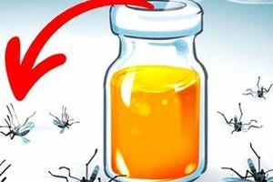 11 cách diệt muỗi trong nhà cực đơn giản chống dịch sốt xuất huyết