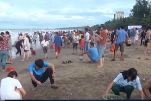 Người dân đổ xô ra biển 'vớt lộc' ở Nghệ An