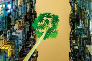 Đề án Xây dựng thương hiệu quốc gia lĩnh vực mỹ thuật, nhiếp ảnh: Băn khoăn tính khả thi