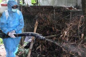 Đà Nẵng: Một ca tử vong do sốt xuất huyết