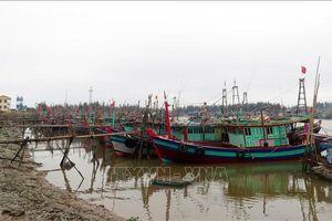 Hà Tĩnh: Thực hiện cấm biển và kêu gọi tàu, thuyền vào nơi trú ẩn an toàn