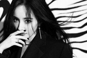 Trưởng fan của Dương Mịch chỉ trích công ty Gia Hành, 'quậy lớn' đến mức từ chức quản lý fandom