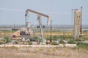 Giá dầu giảm hơn 2% khi Trung Quốc tăng thuế đối với dầu thô Mỹ