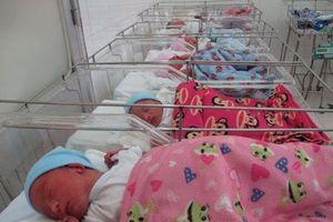 Các bé trong ca sinh 5 đầu tiên ở Việt Nam vào lớp 1: 'Đó là sự nhiệm mầu của cuộc sống'