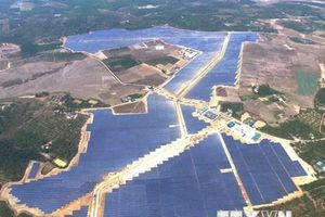 Đắk Nông: Lợi ích 'kép' từ dự án điện Mặt Trời quy mô lớn