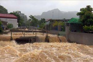 Một thanh niên bị nước lũ cuốn trôi khi bơi qua suối Darsal ở Lâm Đồng