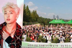 Không chạy quảng cáo rầm rộ, người hâm mộ trồng rừng dưới danh nghĩa thành viên RM (BTS) làm quà tặng sinh nhật anh chàng
