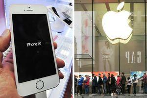 Nóng: Apple sẽ trình làng iPhone giá thấp ngay đầu năm 2020