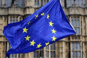 EU sẽ tuyên bố Brexit không thỏa thuận là 'thảm họa tự nhiên'