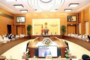 Ủy ban Thường vụ Quốc hội sẽ cho ý kiến vào các báo cáo về phòng, chống tội phạm