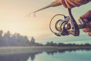 Cần thủ hí hửng câu cá to, rồi ám ảnh khi nhấc cần câu...