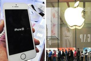 Lo mất thị phần, Apple sẽ tung iPhone giá rẻ để hút khách tại thị trường mới nổi