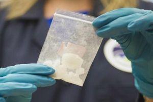 Mỹ thu giữ lượng fentanyl có thể giết 14 triệu người
