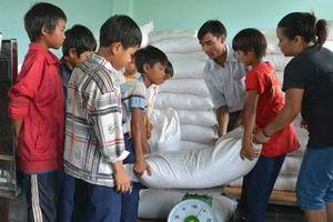 Tổng cục Dự trữ Nhà nước xuất cấp gần 4 vạn tấn gạo hỗ trợ học sinh vùng khó khăn