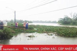 Đẩy bèo tây - giải pháp khơi thông dòng chảy tạm thời tại TP Hà Tĩnh