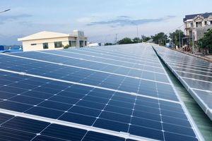 Dự án Nhà máy Điện mặt trời Phước Thái 1 hơn 1.112 tỷ đồng: Chọn xong nhà thầu cho 8 gói thầu