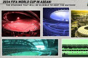 AFF tạo cú hích cho kế hoạch Đông Nam Á chạy đua đăng cai World Cup