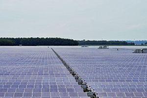Khánh thành dự án điện mặt trời lớn nhất Việt Nam