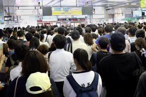 Tokyo đã lên phương án di tản 2,5 triệu người do bão Faxai