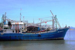 Quảng Nam: Nhiều tàu cá nằm bờ