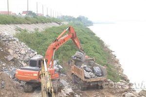 Phú Thọ: Xử lý khẩn cấp tình trạng sạt lở đê tả sông Thao