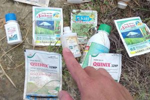 Thuốc BVTV bị cấm vẫn mua bán tràn lan tại Thừa Thiên - Huế