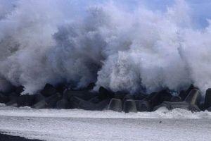 Tokyo ngưng trệ, hàng chục thương vong sau 'siêu bão cuồng phong' Faxai
