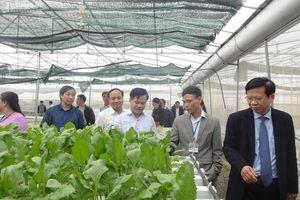 Tiếp tục lan tỏa điển hình về ứng dụng tiến bộ kỹ thuật vào nông nghiệp, nông thôn