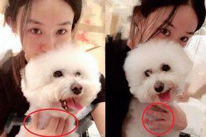 Triệu Lệ Dĩnh khoe series ảnh mặt mộc nhưng câu hỏi lớn nhất của netizen lại là 'Nhẫn cưới đâu rồi?'