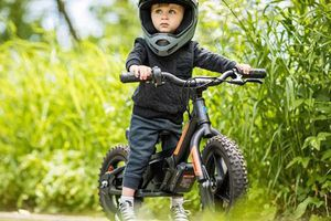 Xe điện Harley-Davidson IRONe giá chỉ 15,2 triệu đồng