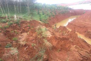 Sạt lở đất gần Nhà máy Alumin Nhân Cơ, hàng ngàn m2 cây trồng bị vùi lấp