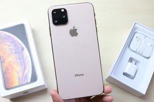 Người Việt tìm iPhone 11 nhiều nhất thế giới