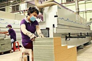 Bốn thách thức mới của ngành chế biến gỗ