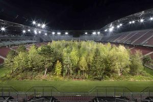 Sân vận động biến thành rừng cây rậm rạp