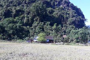 Cơ cực miền tây Thanh Nghệ Tĩnh: [Bài 3] Không thể khư khư ôm rừng, rồi chịu đói