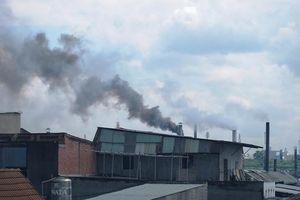 Các địa phương rà soát cơ sở sản xuất, kinh doanh có sử dụng hóa chất độc hại