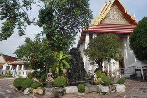 Sững sờ trước kỳ quan tượng Phật nhập Niết bàn khổng lồ