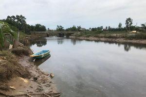 Người dân hốt hoảng vì cá sấu bất ngờ xuất hiện dưới sông ở Hà Tĩnh