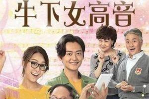 Huỳnh Tâm Dĩnh đang gặp may, TVB 'ân điển' cho phim 'Ngưu hạ nữ cao âm' thành phim khánh đài
