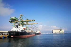 Doanh nghiệp Nhật Bản đề xuất đầu tư dự án xây dựng tổ hợp công nghiệp tại Hà Tĩnh