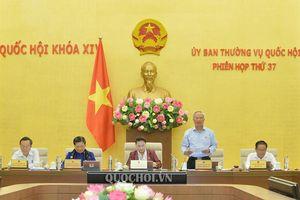 Ủy ban Thường vụ Quốc hội cho ý kiến về báo cáo sơ kết 05 năm triển khai thi hành Hiến pháp