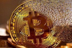 Giá Bitcoin diễn biến điên rồ, thị trường liệu có lành mạnh?