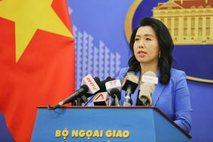 Đề nghị Hong Kong đảm bảo an toàn cho người Việt ở đây