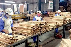 128 quốc gia nhập khẩu gỗ và lâm sản của Việt Nam