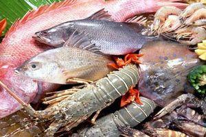 Cách chọn mua hải sản tươi ngon, không ủ ướp