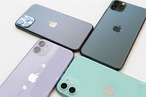 Hé lộ giá bán iPhone 11 chính hãng tại Việt Nam: Rẻ bất ngờ